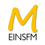 Radio MEINSFM