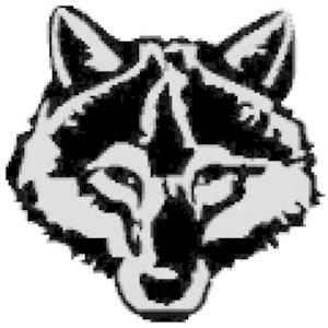 Radio wolffchen