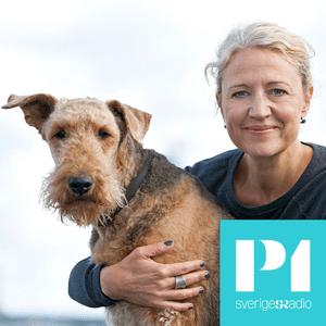 Podcast Hundland - Sveriges Radio