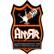 Radio AsaltoMata Radio